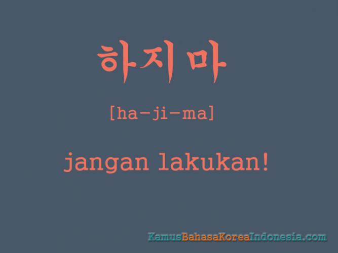 Kata Kata Korea Dan Artinya   Katapos